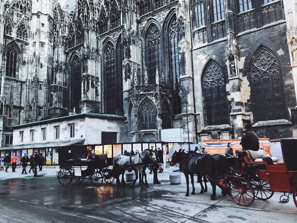 куда пойти в Вене