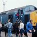 40 174, Doncaster Works, 28-07-84