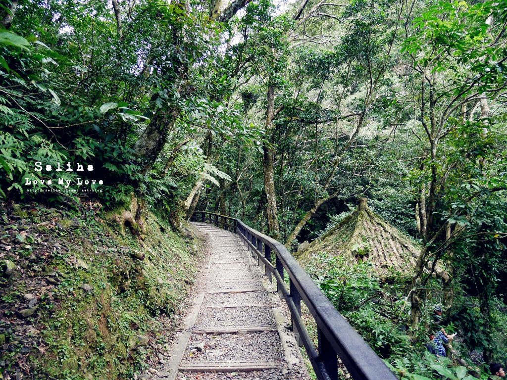 新北三峽一日遊踏青景點推薦滿月圓森林遊樂區 (39)