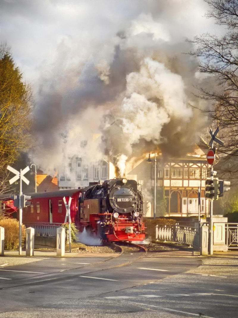 Wernigerode narrow gauge steam railway. Credit Gerry Balding