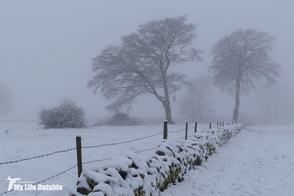 P1130200 - December Snow in Leeds