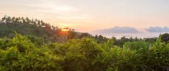 20180107-Fiji-02024