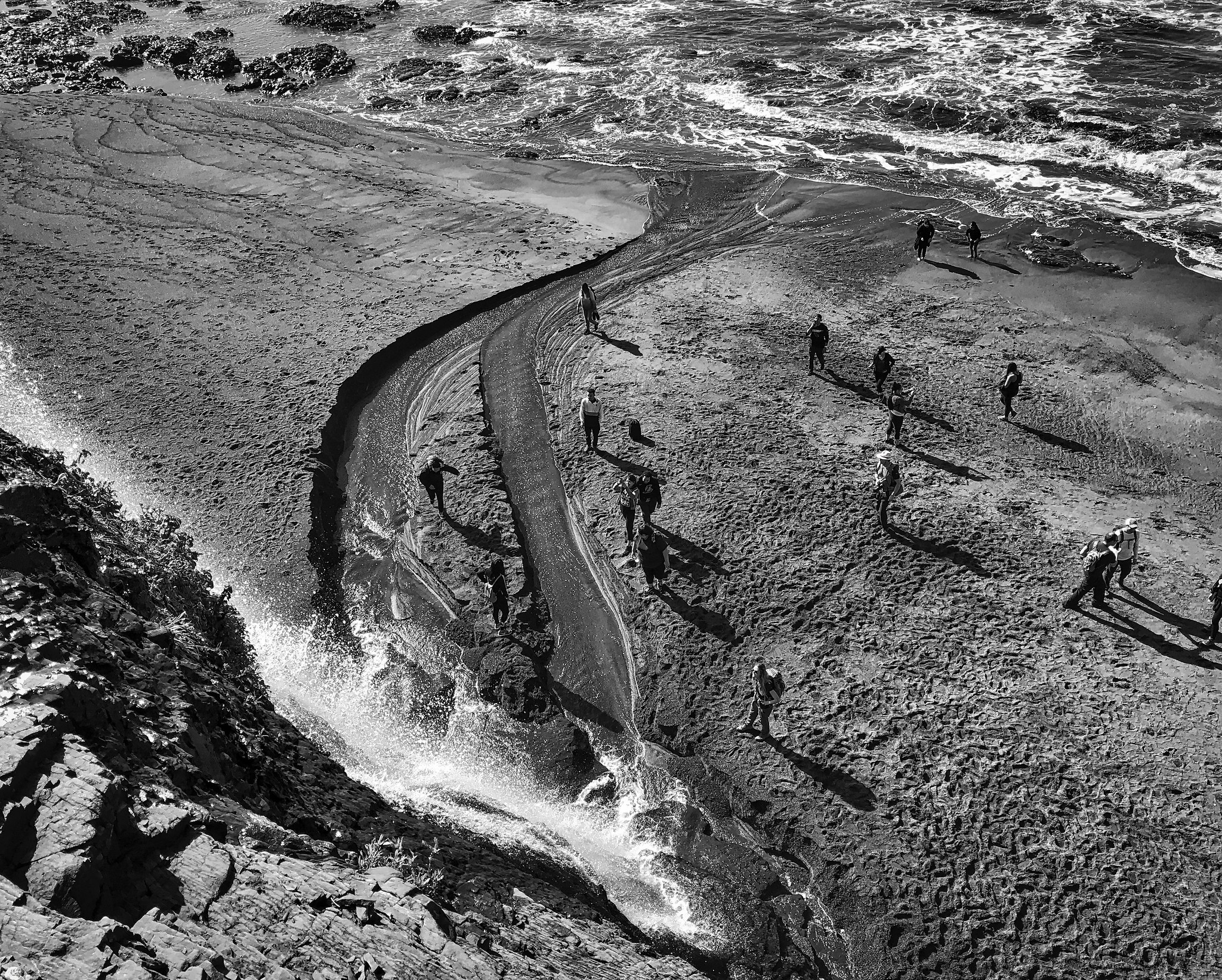 Alamere Falls / Coastal Trail