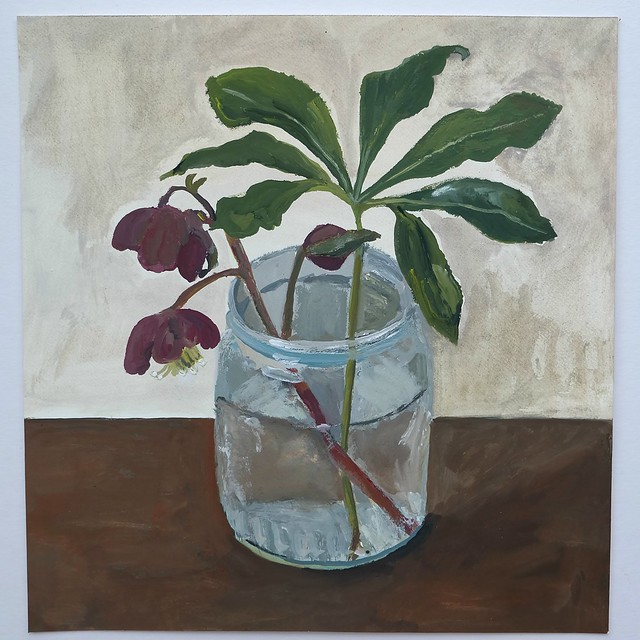 Hellebore in a jar (22cm x 21cm) gouache on Fabriano paper