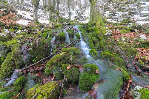 Parque Natural de Gorbeia #DePaseoConLarri #Flickr -61