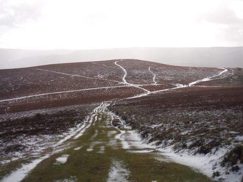 Spot Height 430m Unnamed Top on Mynydd Llangorse