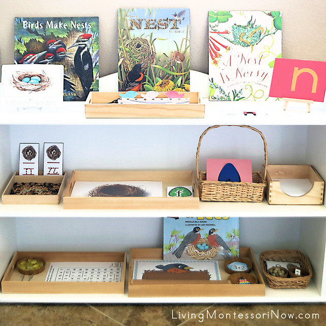 Montessori Shelves with Nest-Themed Activities