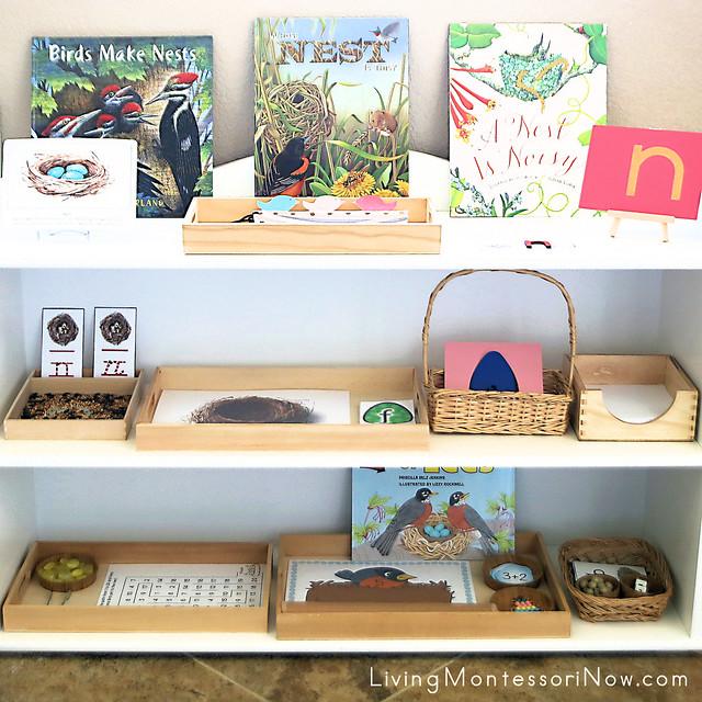 Montessori Shelves with Nest-Themed Activities