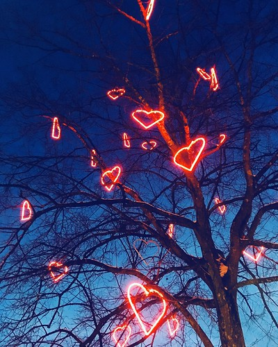 a tree of ❤️ lights, jakobsberg, stockholm suburb, sweden, february 2018
