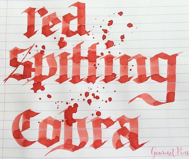 Ink Shot Review Bookbinders Red Spitting Cobra @AppelboomLaren 6