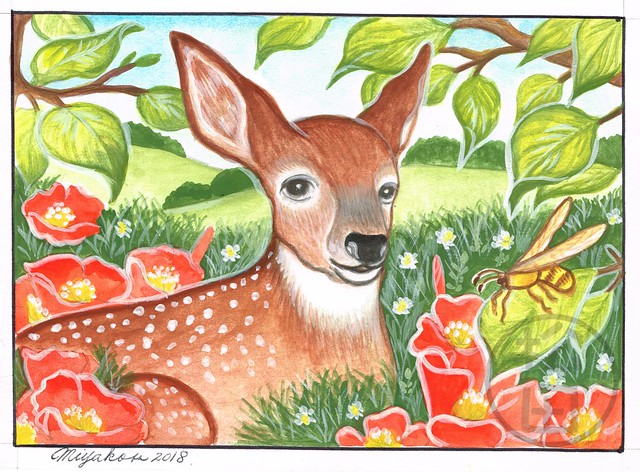 Deer with wasp and poppies in the countryside