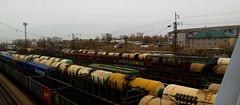 Trenes y más trenes