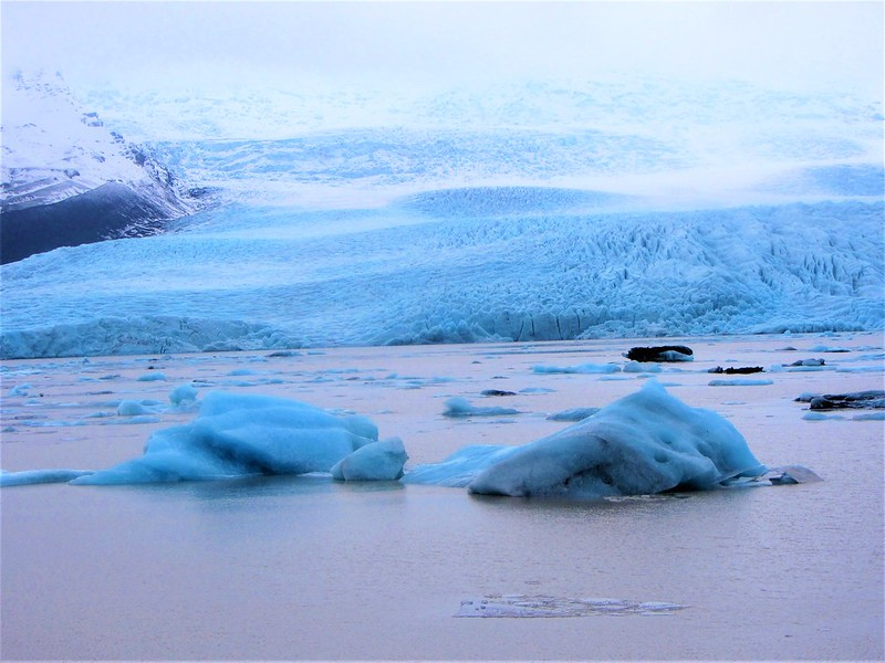le-glacier-fjallsarlon-iceberg-lagoon-islande-thecityandbeauty.wordpress.com- blog-voyage-IMG_7417 (3)