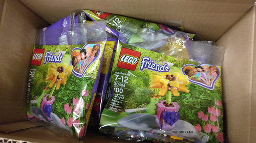 LEGO Friends Friendship Flower (30404)