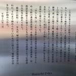 IMG_8180