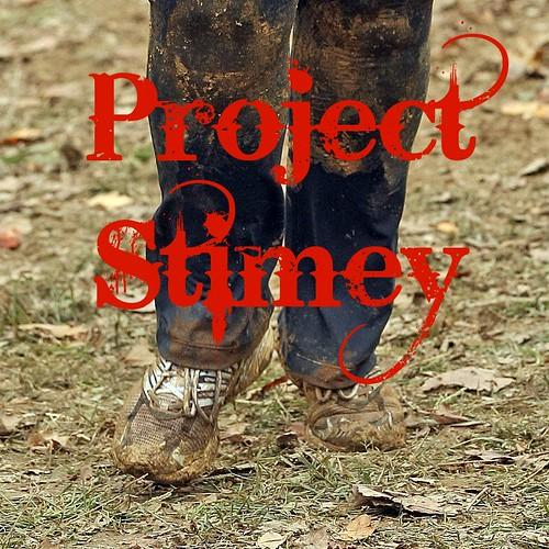 project-stimey-1