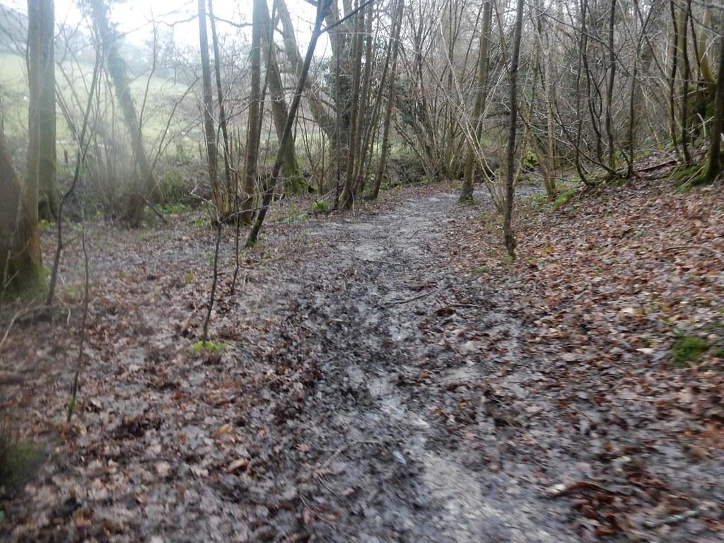 Muddy path Wadhurst circular