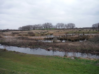 Wantz Stream and Pond, Ex-Hospital Site behind