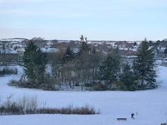 Arbroath in Winter, 2010