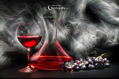 El mundo del vino