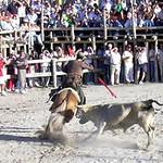 Fiestas 2004