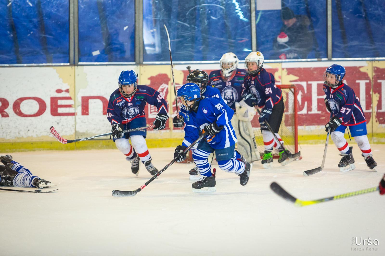 14. odprto prvenstvo Zagreba v hokeju na ledu