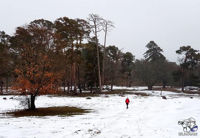 Necrópolis de Revenga y La Cerca con nieve 16