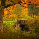Stoddard Creek