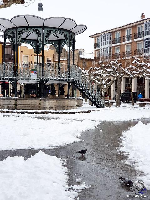Por fin, nieva este año en Briviesca  (5)