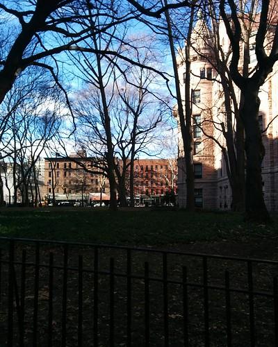 North across Theodore Roosevelt Park #newyorkcity #newyork #manhattan #amnh #theodoreroosevelt #theodorerooseveltpark #uppereastside #latergram