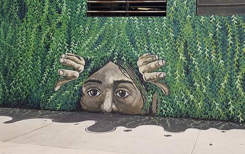 #StreetArt #ArteCallejero #Esperanza #SantaFe #Argentina