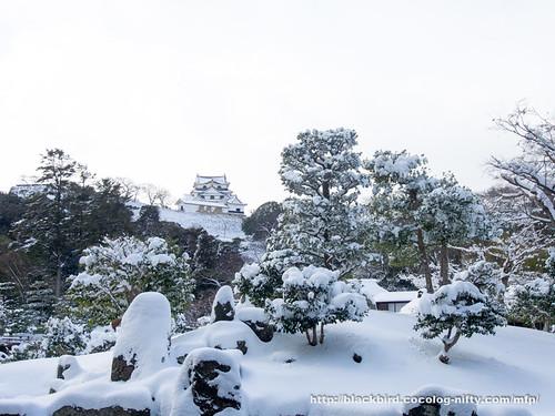 Snow day 20180125 #04