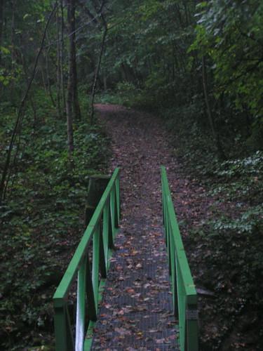 20070829 11292 0705 Jakobus Wald Weg Brücke