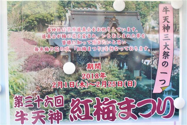 ushikitano-gosyuin02001