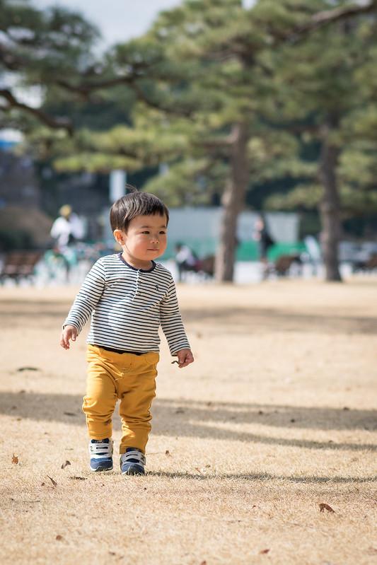 冬の皇居外苑の芝生を歩く子ども