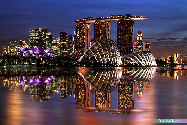 藍光時分 l The Blue Hour, Gardens by the Bay *Corners of Singapore*
