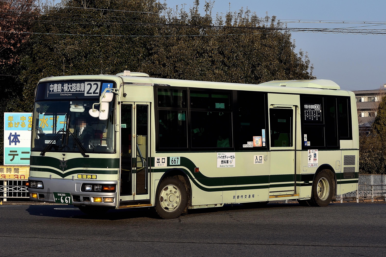 Kyotoshi_667