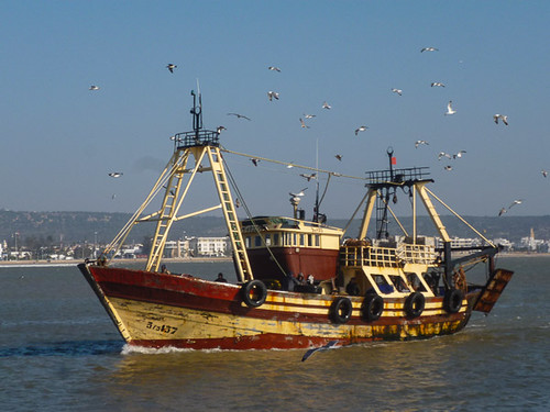 A trawler coming home