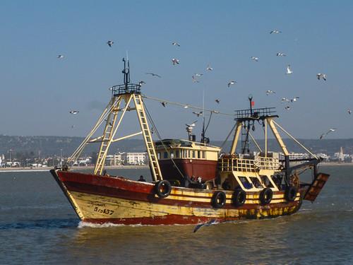 A trawler coming home