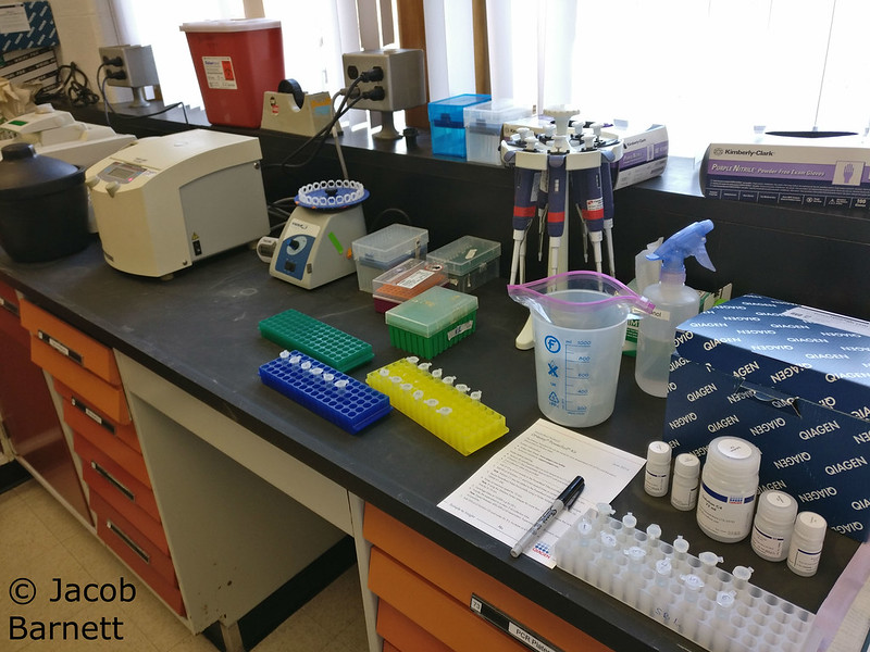 DNA Extraction Tools