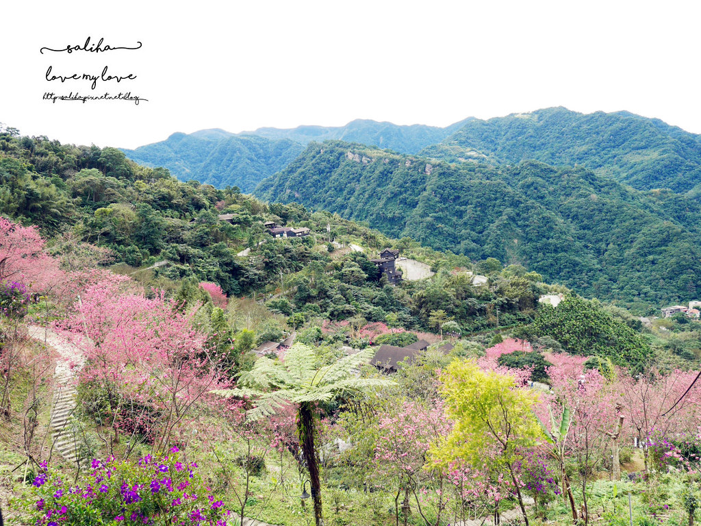 三峽一日遊景觀餐廳推薦花岩山林 (36)