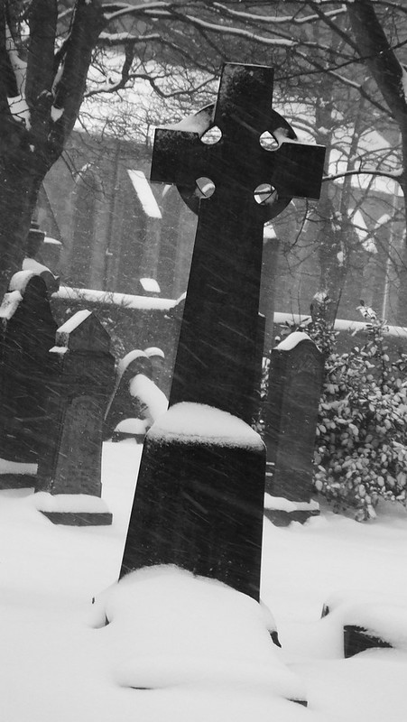 Boneyard in the snow 05