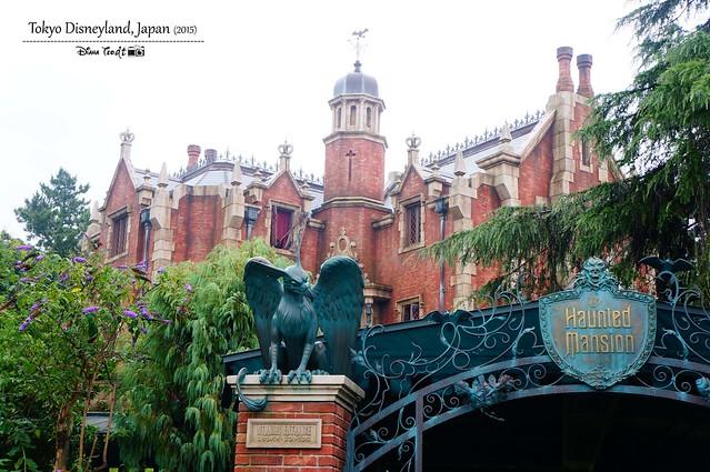 Tokyo Disneyland 14
