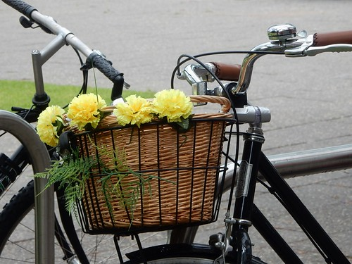 A Basket Between Bikes