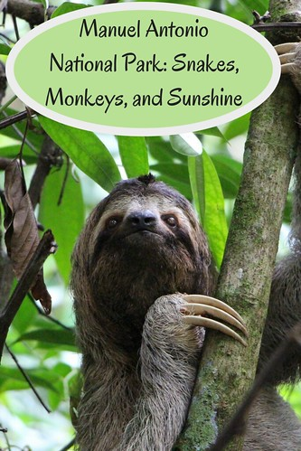Manuel Antonio National Park: Snakes, Monkeys, and Sunshine