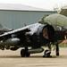 BAe Harrier T.8 ZD992 03 North Weald 10.05.1997