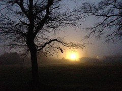 Early in the foggy morning - Photo of Vendays-Montalivet