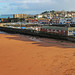 the Harbour at Paignton