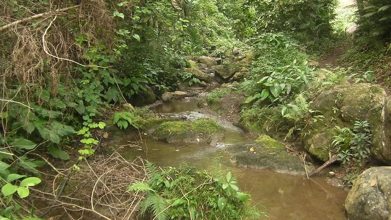 Sapangdaku river