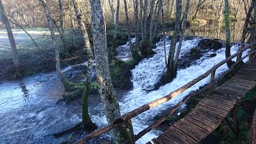 Aguas do río Asneiro - Muíño de Froiz